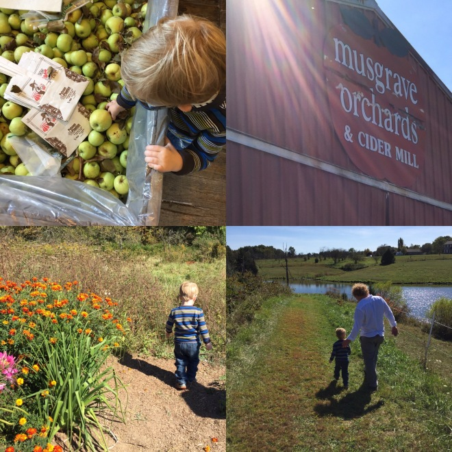 Musgrave Orchard & Cider Mill